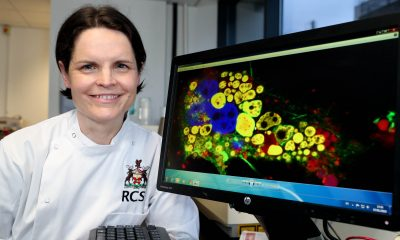 RCSI researchers develop new tuberculosis treatment maxwellphotography